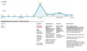 BlossomHill.com-SEO-stats-summary-2014